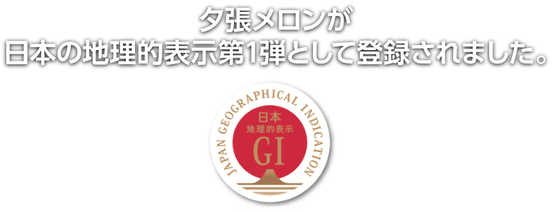 夕張メロンが日本の地理的表示第一弾として登録されました