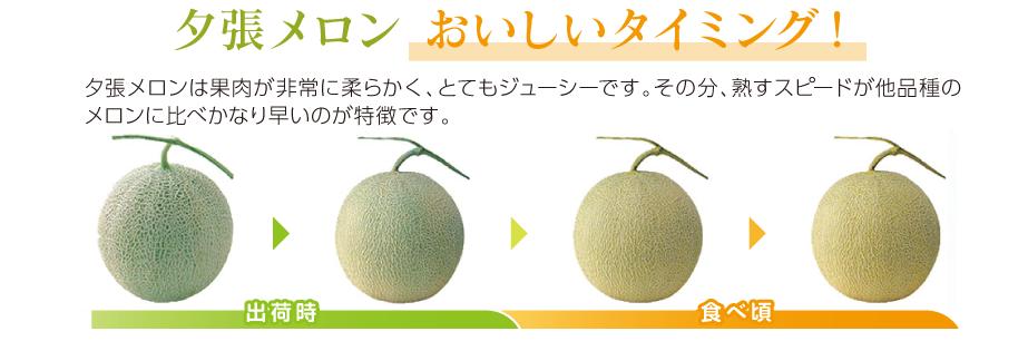 yubari_oishii 3