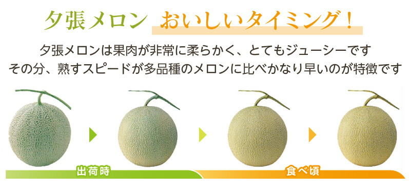 yubari_oishii-3